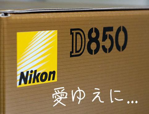 DSCF8241.jpg